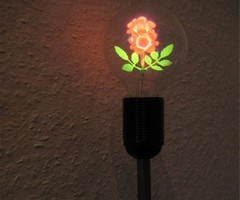 Lamp With A Flower Inside The Bulb