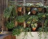 15 Cool Vertical Garden Inspirations