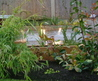 Peter Donegan landscaping Weblog » small-garden-ideas-lights and mirror
