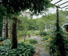 Garden Design Ideas inspired by ancient Japanese Tea Garden
