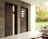 Gamma Energy the Contemporary Entrance Door by Perusko  Sartori/ Home Trends 