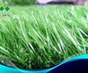 Artificial Grass Carpet (G008)