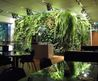 indoor garden design ideas in 3