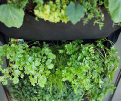 Cool Indoor Garden Design Ideas for Small Space/ Home Trends