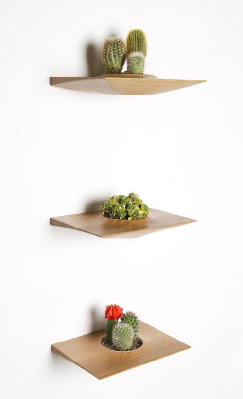Domenic Fiorello, Plant Pods by Domenic Fiorello Bring a Touch of Nature Home