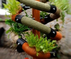 Space-Saving Solution To Grow Herbs In Your Garden