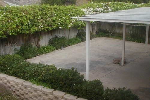 Backyard Covered Patio, PICTURES/Outside/Backyard_PatioCovered