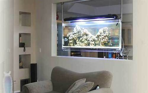 Idee Di Decorazione Acquario, Huge Elliptical Suspended Space Aquarium for modern Home Interior