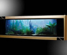 The most expensive aquarium with Gold Design Decorating Ideas