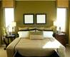 Interior Decorating Color Schemes Using The Color Wheel for Green
