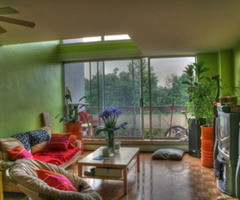 Home Interior Decoration Ideas with Indoor Plants