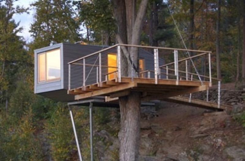 Modern tree living creative treehouse designs design for Modern tree house designs