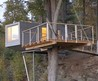 Modern Tree House Architecture Design for Kids tree