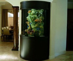 Aquarium Ideas for Home aquarium decoration ideas – Modern Home Design