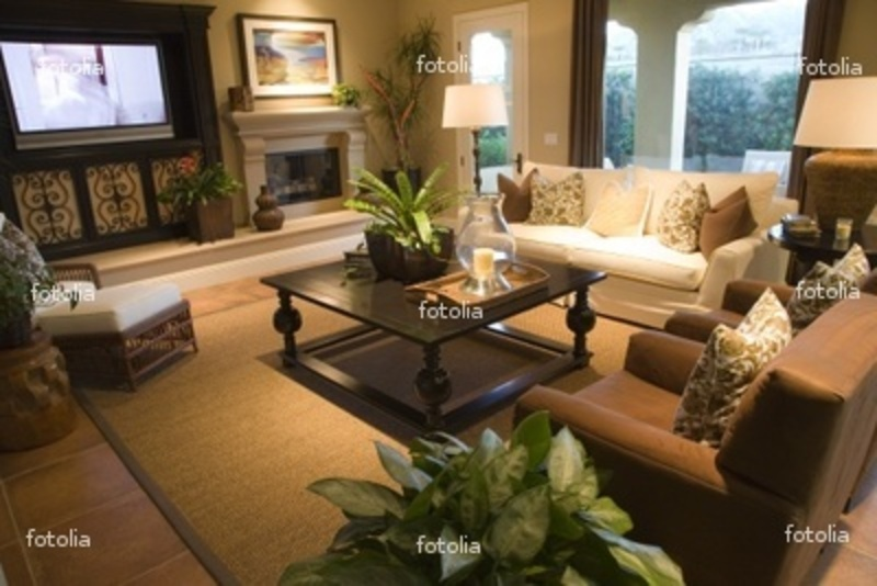 Luxury Home Decor Luxury Home Living room with Contemporary Decor