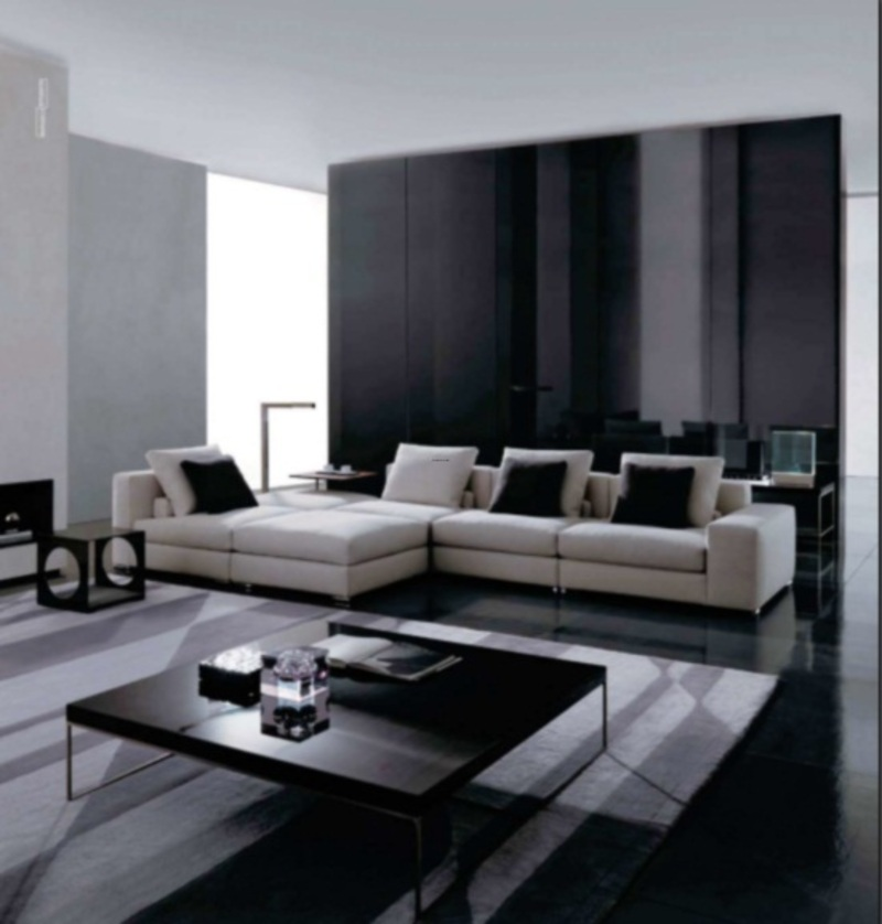 Black and white living room design theme in modern contemporary decorating style by rodolfo for Modern small living room design