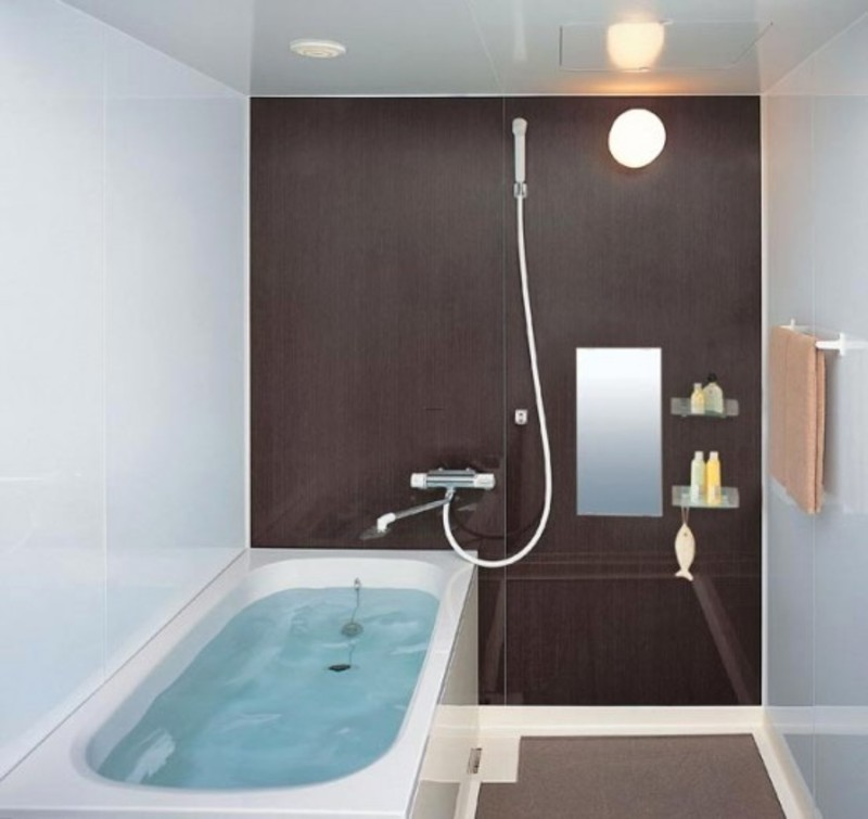 Modern Tiny House Cabin: Bathroom Decorating Ideas For Small Space / Design