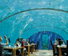 Spot Cool Stuff reviews the Ithaa Undersea Restaurant 