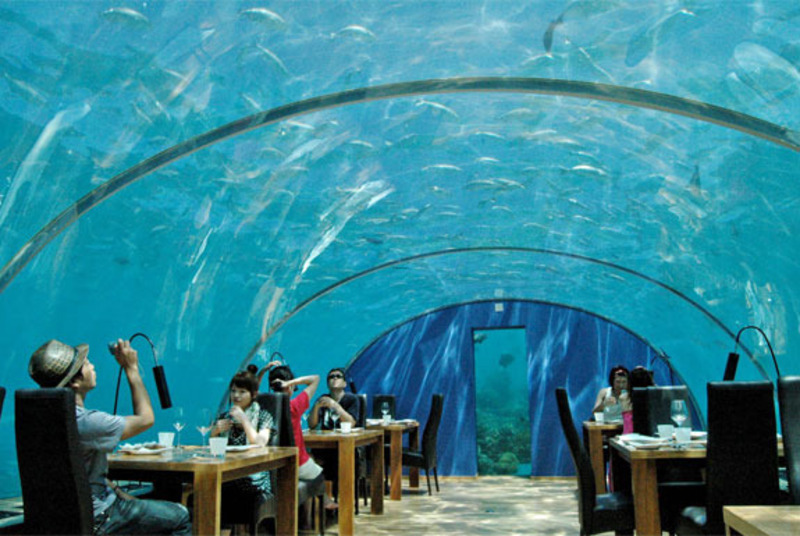 Underwater Restaurant, Spot Cool Stuff reviews the Ithaa Undersea Restaurant