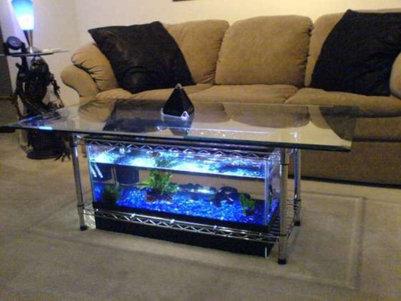Coffee Table Fish Tank, Aquarium Coffee Table