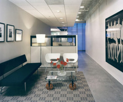 Moca Office Design