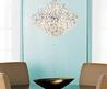 Triopcal Dining Room Chandelier,Cheap, Lghting Fixtures, Sea Shell,
