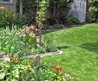 Savvy Landscaping: Landscape Design, Ideas,