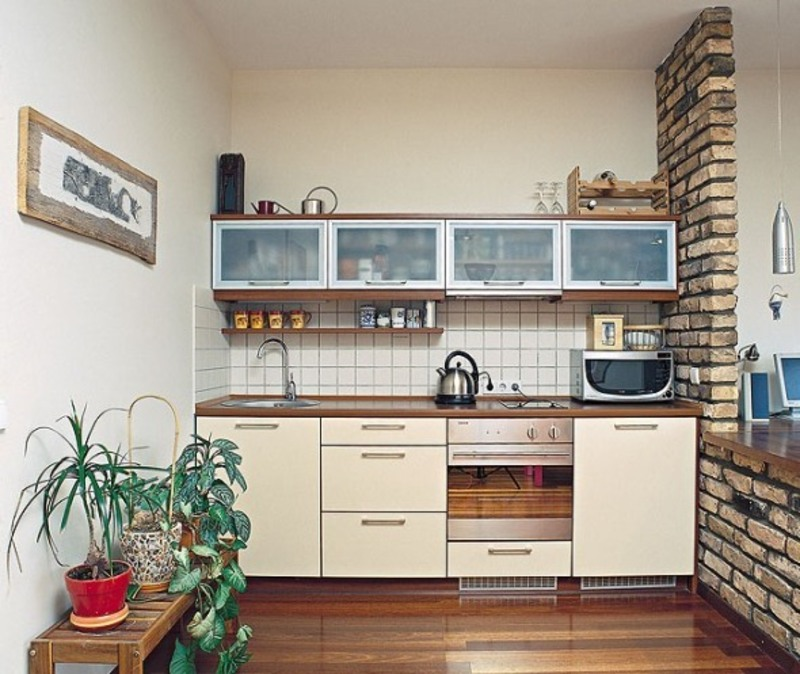 How to organize a small studio apartment kitchen design for Very small studio apartment ideas