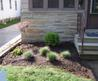 Landscaping Small Yards