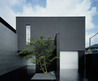 The Minimalist House Design with Black Exterior