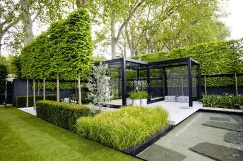 Modern Landscaping Plants  Chelsea Flower Show Garden Comments    Contemporary Landscape Architecture Plan