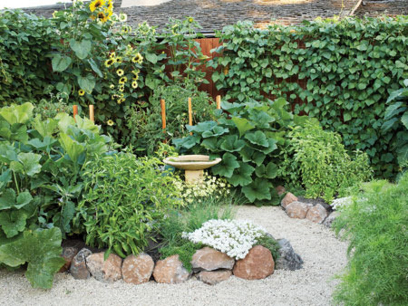 vegetable garden design casual cottage