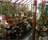 greenhouse kit, greenhouses 