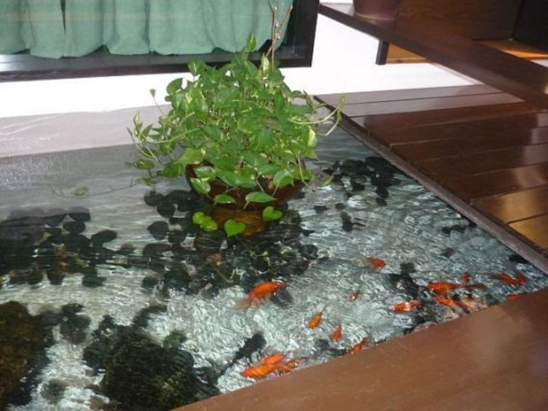 Simple indoor fish pond design design bookmark 7616 for Simple koi pond