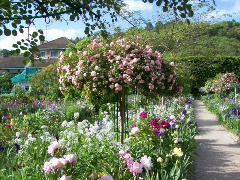 Rose garden ideas pictures native garden design for Garden design with roses