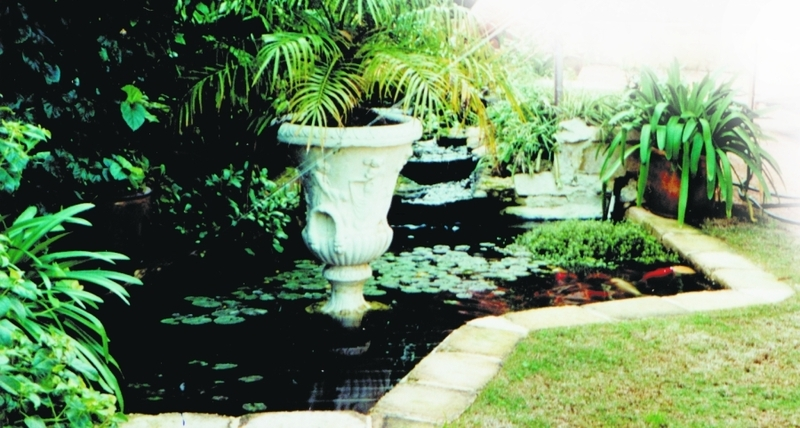 Fish pond books products and services for the design for Garden pond design books