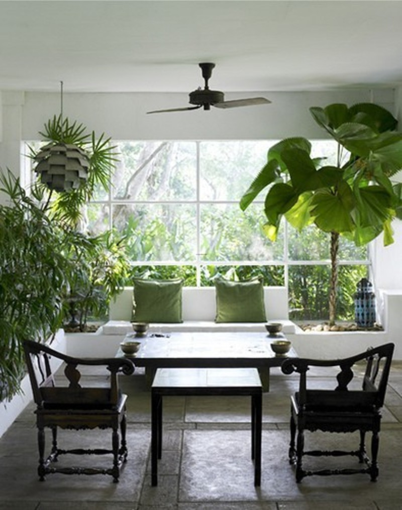 Beautiful indoor garden design with green plants design for Indoor garden design pictures