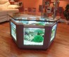 Chic Coffe Table Aquarium Design