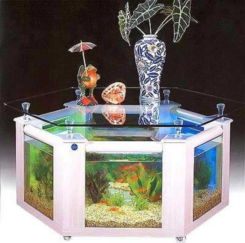 Labyrinth aquarium luxurious home for your fish bed for Labyrinth fish tank
