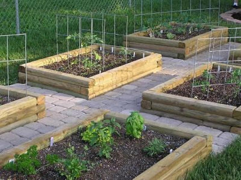 Garden designs however after outdoor indoor design for Raised veggie garden designs