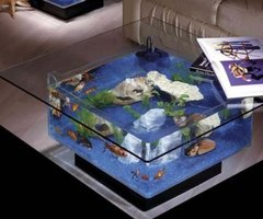 Midwest Tropical Square Coffee Table Aquarium