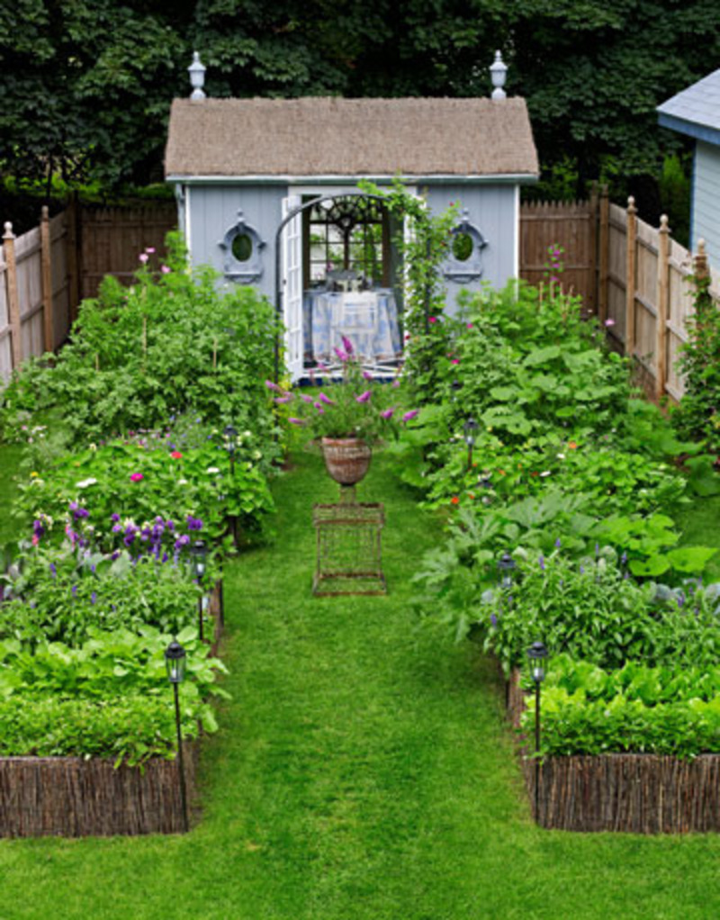 Backyard garden ideas design photograph small backyard ide for Backyard garden designs