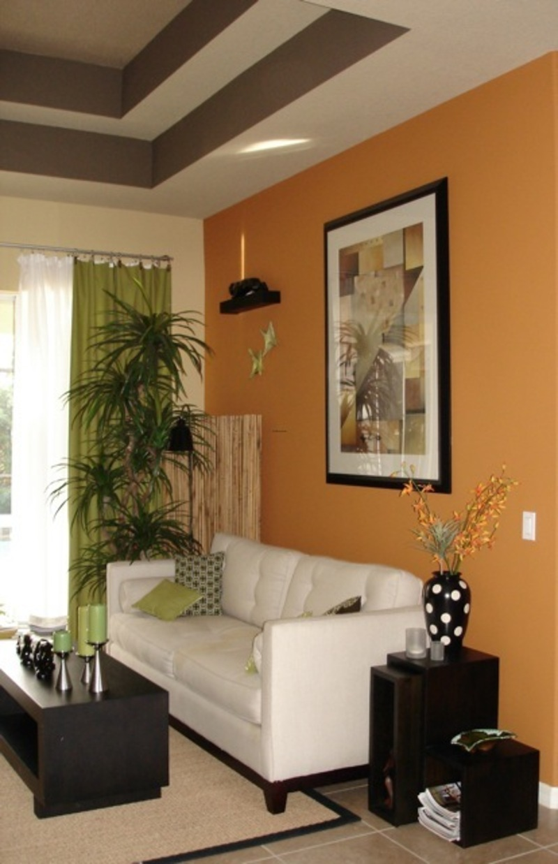 Painted Living Room Image Review