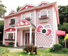 Pink And Sweet Kitty Themed Dream House Design