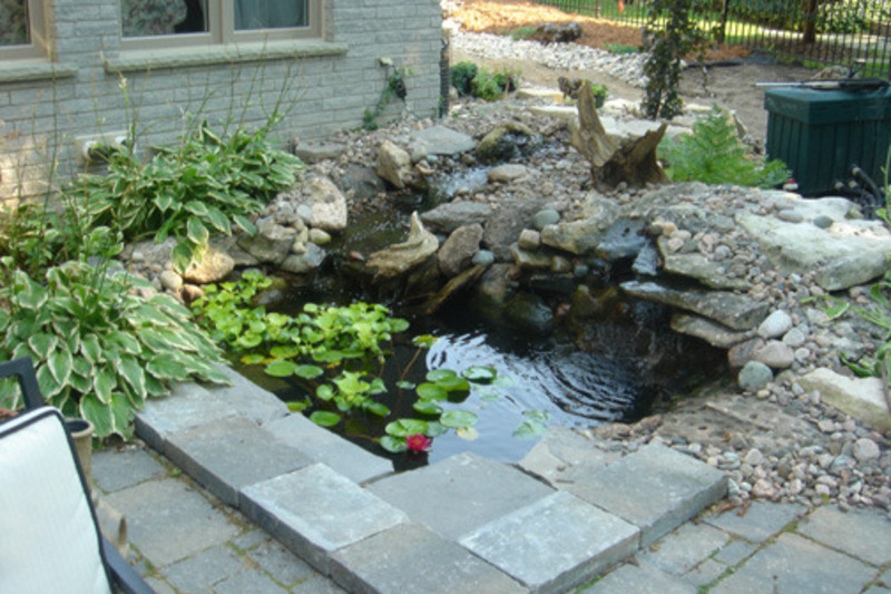 Classic koi fish pond design ideas design bookmark 9738 for Koi pool dekor
