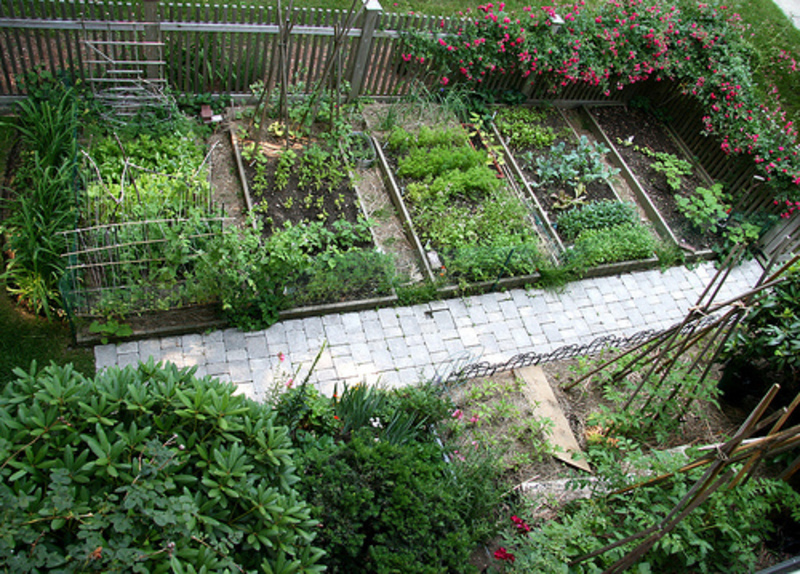Home vegetable garden design easy home decorating ideas for Veggie garden design