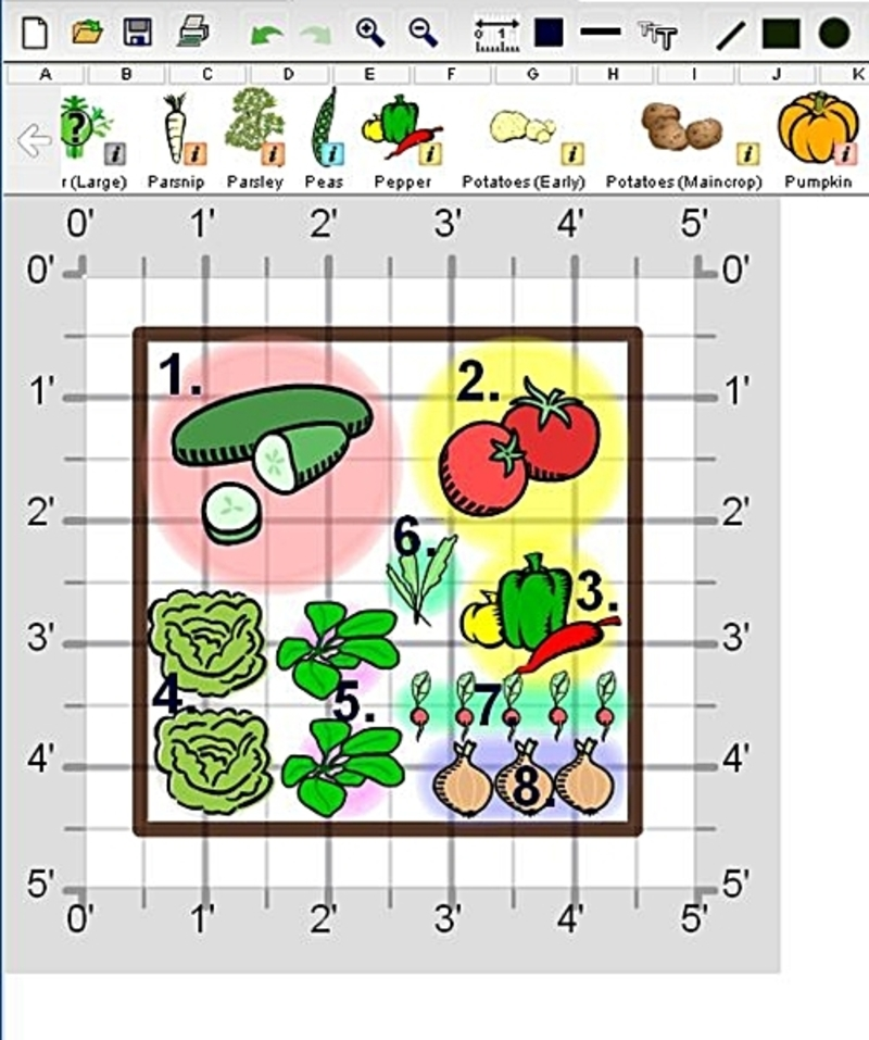 Create a fresh salad garden design bookmark 9845 for Small garden layout plans