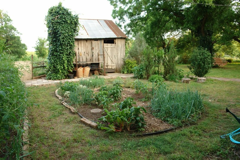 Vegetable garden design casual cottage for Small vegetable garden layout plans