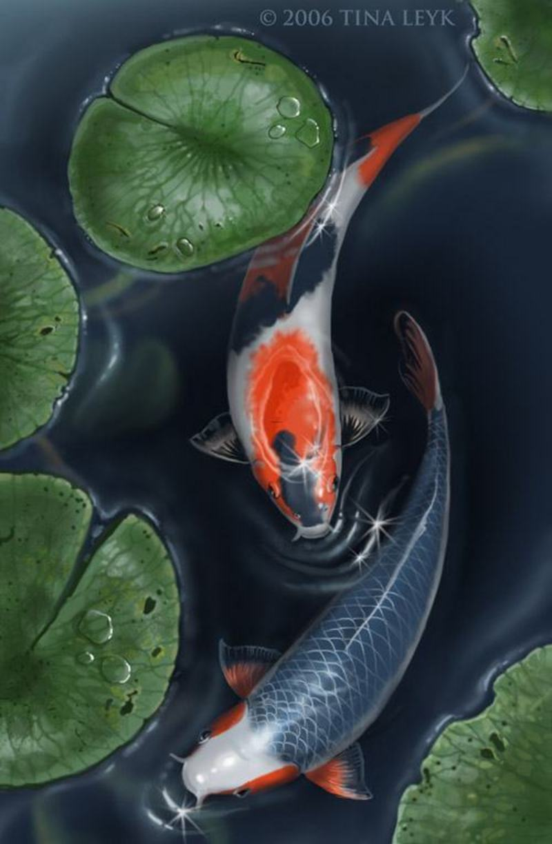 Peace meditation nearby beautiful koi fish pond design by for Koi carp pond ideas