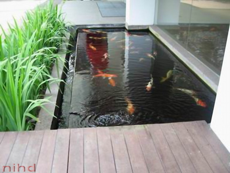 Garden fish pond design design bookmark 11235 for Modern fish pond ideas